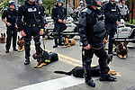 The former American industrial monster Pittsburgh, PA hosted the G20 Summit in September, 2009. Protesters from around the country with a colorful assortment of causes used the streets of the northeastern city to let their opinions be known. About 4,000 police officers in riot gear were bussed in to counter potential mayhem. What resulted was an odd juxtaposition of passion from all walks of life.