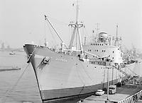 September 1963.  Scheepswerf Mercantile Marine Engineering in Antwerpen. Schip Warnow.