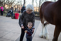 NWA Democrat-Gazette/CHARLIE KAIJO Kathy Hardy holds Leo Sissell, 3, of Bella Vista (bottom center) as he looks on at a Clydesdale, Thursday, November 29, 2018 at Mercy Hospital in Rogers.<br />