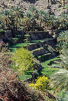 Wadi Bani Kharus, Oman.  Terraces for farming.