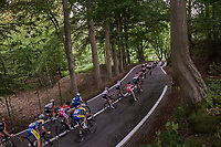 descending through the forest<br /> <br /> Ster ZLM Tour (2.1)<br /> Stage 4: Hotel Verviers &gt; La Gileppe (Jalhay)(190km)