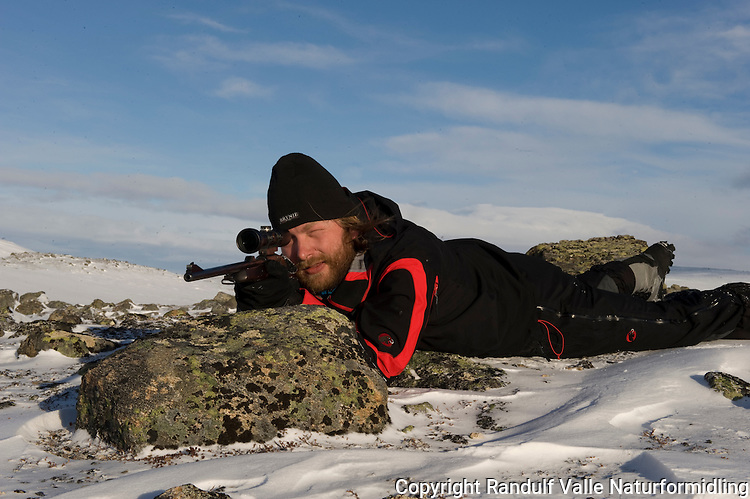 Mann på rypejakt med rifle. ---- Man hunting ptarmigan with rifle.