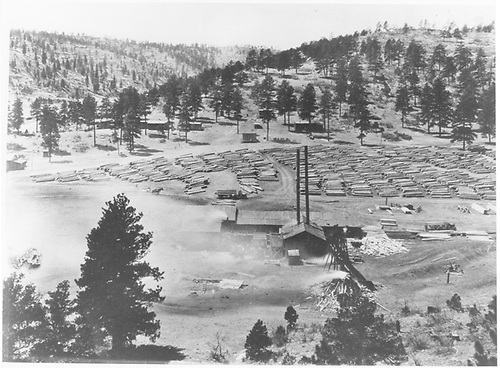 Elevated view of sawmill, log decks, truck roads.<br /> Continental Tie &amp; Lumber Co.  Ponil Park, NM  1921
