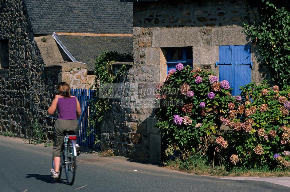 Europe/France/Bretagne/22/Côtes d'Armor/Ploubazlanec: Détail maison de pêcheur, hortensias et cycliste