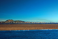 Edinburgh and Arthur's Seat from Musselburgh, East Lothian
