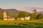 Last light on farmland in Rupert, Vermont, USA