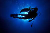 A young woman and a Green Sea Turtle (Honu) in silhouette while scuba diving in Hawaii's blue waters.
