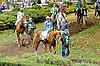 Partin before The Delaware Park Arabian Juvenile Championship at Delaware Park on 10/27/12...