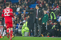 Wales manager Chris Coleman during the International Friendly match between Wales and Panama at the Cardiff City Stadium, Cardiff, Wales on 14 November 2017. Photo by Mark Hawkins.