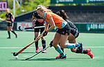 AMSTELVEEN  - Marle Brenkman (Gro) .  Hoofdklasse hockey dames ,competitie, dames, Amsterdam-Groningen (9-0) .     COPYRIGHT KOEN SUYK