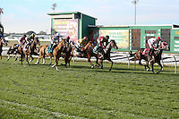 January 17, 2015:  I'm a Chatterbox ridden by Florent Geroux leads in the Silverbulletday Stakes  at the New Orleans Fairgrounds course. Steve Dalmado/ESW/CSM