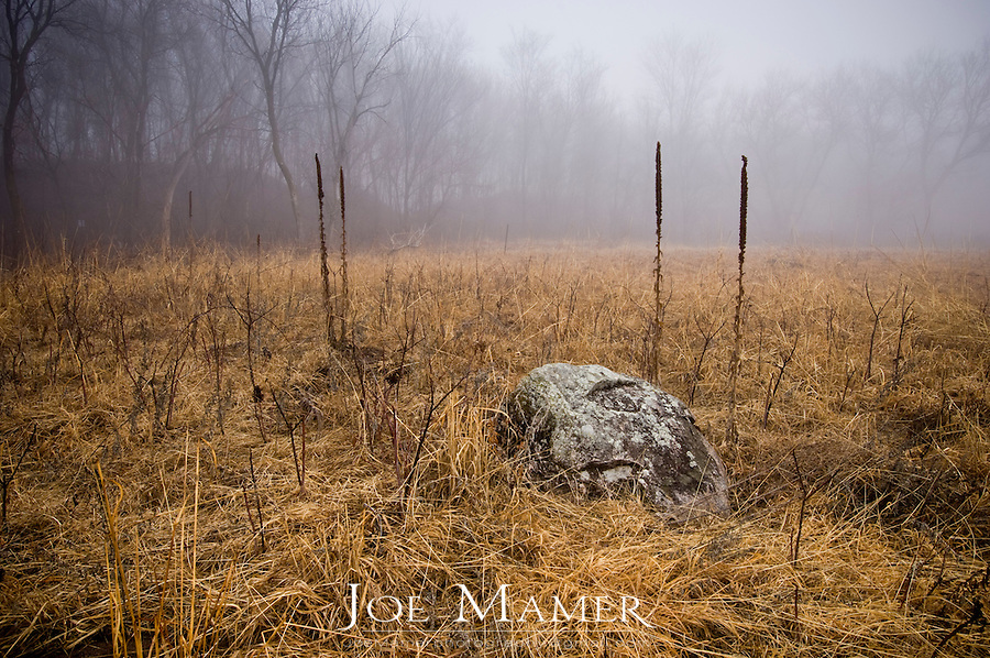Glacial erratic rests on Minnesota prairie land in early spring morning fog.