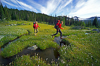 Wells Gray Provincial Park, British Columbia, Canada, August 2006. The wilderness of the Trophy mountains is full of meadows, creeks, lakes and forest. Trekking the backcountry of Wells Gray requires expert outdoor skills or a good guide, as one will enter a wilderness area with mountains, lakes and forests. Photo by Frits Meyst/Adventure4ever.com