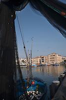 """Europe/France/Aquitaine/64/Pyrénées-Atlantiques/Pays Basque/Saint-Jean-de-Luz: Au port de pêche le Thonier Canneur """"Aïrosa"""" débarque  ses filets  pour la pêche à la sardine  qui va servir d'appat  vivant (peïta) pour la pêche au thon à la canne - En fond la maison de l'Infante"""