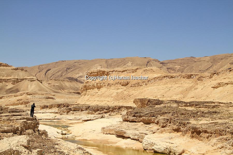 Israel, Negev, a view of Wadi Zin
