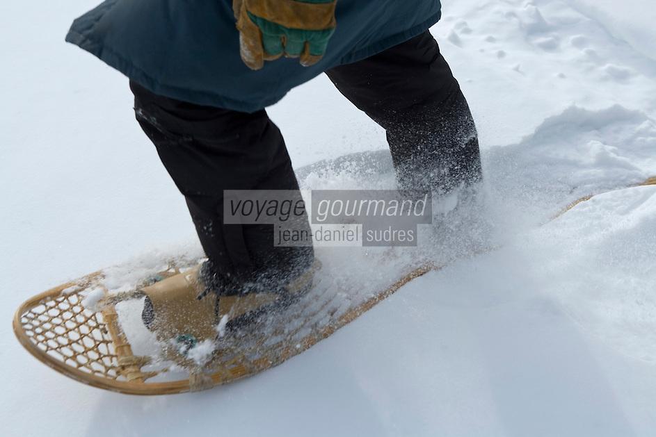 Amérique/Amérique du Nord/Canada/Québec/Mauricie/Saint-Alexis-des-Monts:  A la Pourvoirie du Lac Blanc  randonnée en raquettes avec Gaston le trappeur