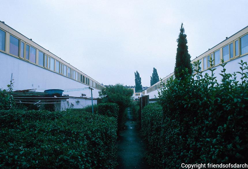 J.J.P. Oud: Kiefhoek Housing Estate, Rotterdam 1928. Gardens in rear.