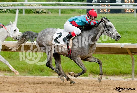 Delishess winning at Delaware Park on 5/27/13.