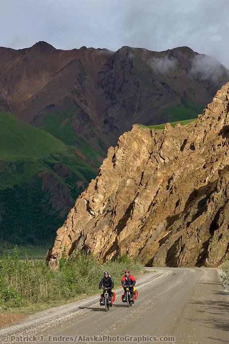 Bicycle riders on the Denali park road near the Toklat river, Denali National Park, Interior, Alaska.