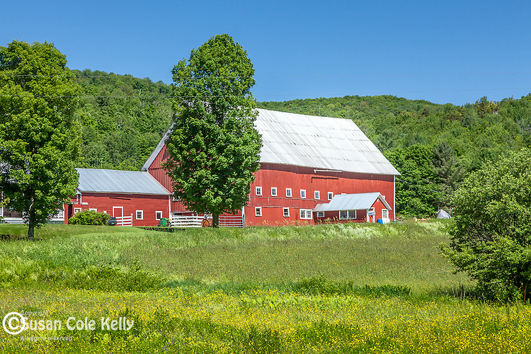 A red barn in Calais, VT, USA