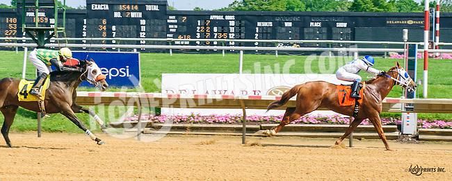 Newport Red winning at Delaware Park on 6/4/16