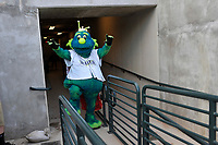 Mason, the mascot of the Columbia Fireflies, waits to take the field in a game against the Charleston RiverDogs on Saturday, April 6, 2019, at Segra Park in Columbia, South Carolina. Columbia won, 3-2. (Tom Priddy/Four Seam Images)