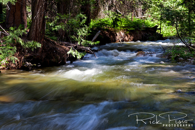 Bubbs Creek in Kings Canyon National Park