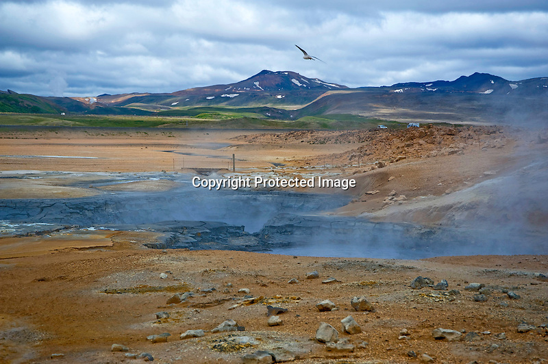 Steaming Boiling Mud Pots at Hverarond Geothermal Field in North Iceland