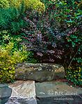 Stone Garden Bench, Fern Canyon Garden, Mill Valley, California