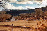 USA, Utah, horse farm and barn in Rockville, Rte 9