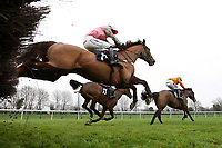 Race winner Trojan Sun ridden by Felix De Giles (R) in jumping action in the Connollys Red Mills Racehorse Cubes Handicap Chase