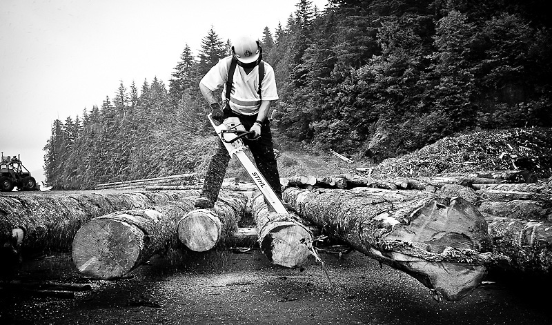 After the wood has been sorted, graded, and scaled Steve Holt (bucker/bundler) trims logs to desirable lengths, removing broken butts, tops, rotted material, and other waste to produce marketable logs for sale. Chamiss Bay, Vancouver Island, July 2012.