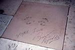 Burt Reynolds Hand & Foot Prints on March 18, 1999 at the Diusney, MGM studio's in Orlando, Florida.