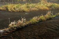 Metolious River, Oregon