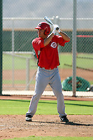 Dominic D'Anna - Cincinnati Reds - 2010 Instructional League.Photo by:  Bill Mitchell/Four Seam Images..