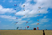 Santa Monica, CA, Kite Flying, Boy, Walking, California, USA,
