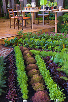 Beautiful Vegetable Garden & Backyard Deck and patio fuirniture, rows of colored lettuces, chard, carrots, and other edible food garden plants