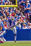21 September 2014: Buffalo Bills punter Colton Schmidt punts against the San Diego Chargers at Ralph Wilson Stadium in Orchard Park, NY. The Chargers defeated the Bills 22-10 in AFC play. Mandatory Credit: Ed Wolfstein Photo *** RAW (NEF) Image File Available ***