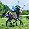 Rum Go winning at Delaware Park on 8/4/16