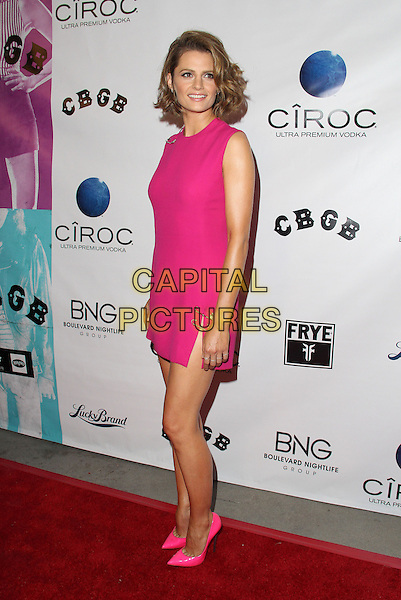 Stana Katic<br /> &quot;CBGB&quot; West Coast Premiere Held at ArcLight Cinemas, Hollywood, California, USA.<br /> October 1st, 2013<br /> full length dress pink sleeveless slit split safety pins side <br /> CAP/ADM/KB<br /> &copy;Kevan Brooks/AdMedia/Capital Pictures