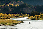 Anglers fly fish for trout from a drift boat during a fall day on the South Fork of the Snake River, Idaho.
