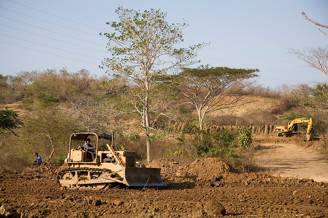 Habitat destruction in progress: Tractor in the process of clearing tropical dry forest in Colombia.
