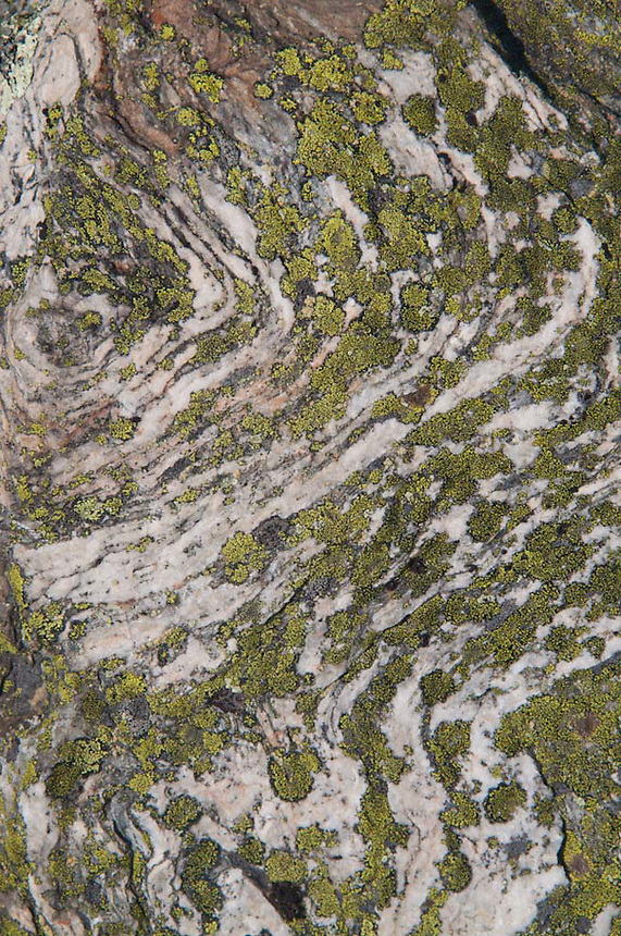 Rock Face and Lichen Detail on Blue Hill Mountain, Blue Hill, Maine, US