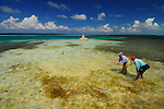 GONE FLY FISHING IN LOS ROQUES