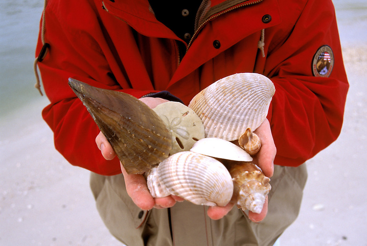 FL: Florida Everglades National Park,.Seashore, beach, shelling near Marco, Model released..Photo Copyright: Lee Foster, lee@fostertravel.com, www.fostertravel.com, (510) 549-2202.Image: flever232