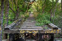 Old abandoned railroad bridge in Cedar Rapids, IA