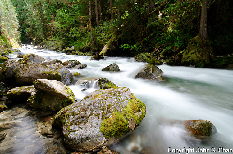 Water cascades through mossy boulders along Newhalem Creek in North Cascades National Park, Washington State
