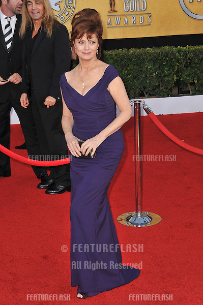 Susan Sarandon at the 17th Annual Screen Actors Guild Awards at the Shrine Auditorium..January 30, 2011  Los Angeles, CA.Picture: Paul Smith / Featureflash