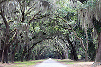 Stock photo: Car passing through oaks in wormsloe plantation Savannah Georgia, US.