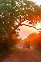 A safari vehicle at sunset, Yala National Park, Southern Province, Sri Lanka.